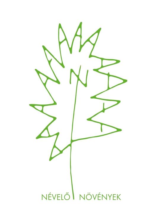 névelu0151 növények