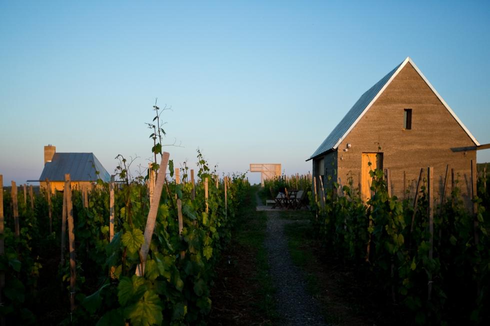 2014_Piranesi_AW_Wine_terrace_02_Gereben_Marian_arch_photo_David_Luk
